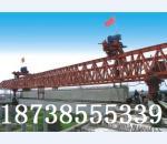 200吨贝博ballbet苹果下载【新东方起重】****
